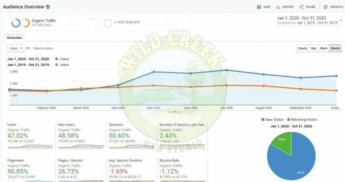 Google Analytics Screenshot of Organic SEO Traffic Increase